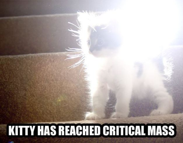 critical_mass_kitty